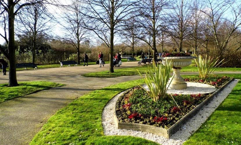 Flowers in Regent's Park